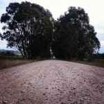 Tour of the King Valley gravel